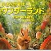 映画「小さな世界はワンダーランド」2匹の成長と驚異の3D映像を目撃する!