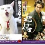 「猫侍」あらすじネタバレ結末と感想