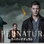 『SUPERNATURAL スーパーナチュラル シーズン8』のネタバレあらすじ結末