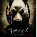映画『サプライズ(2011)』のネタバレあらすじ結末