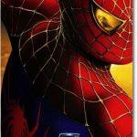 「スパイダーマン2」のネタバレあらすじ結末